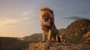 อนิเมชั่น The Lion King