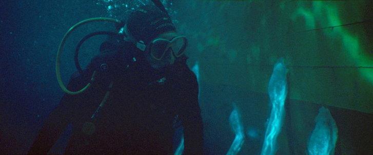 หนัง Sea Fever แนวสยองขวัญ