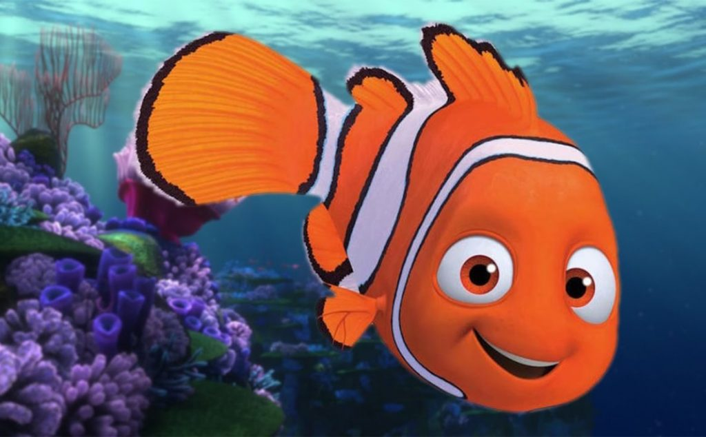 การ์ตูนอดิเมชั่น นีโม่ปลาเล็กหัวใจโต๊ โต